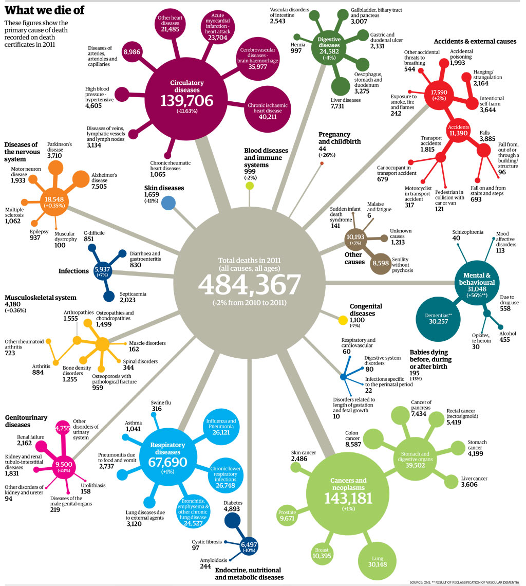 Infographic: Causes of Death Statistics U.K. 2011