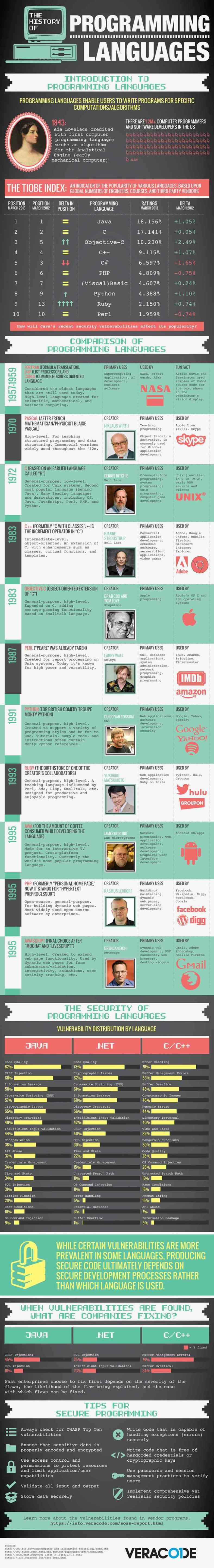Programming Infographic