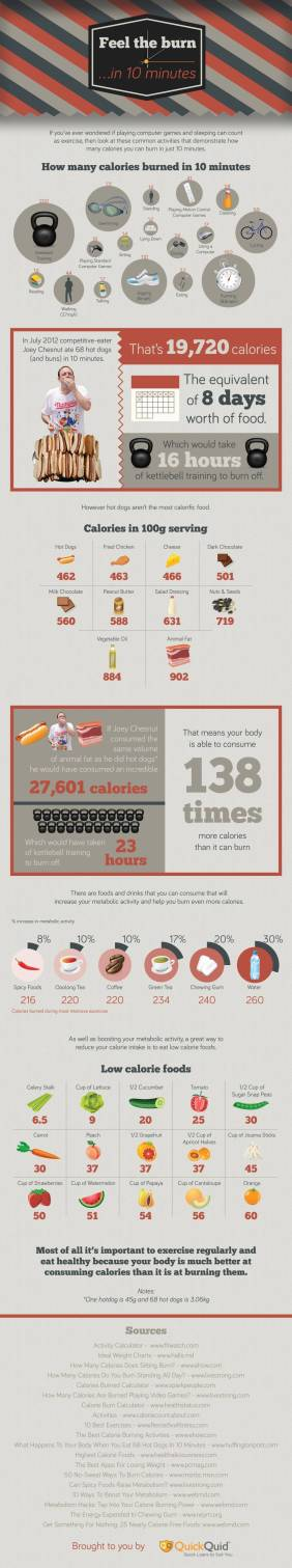 Calorie Infographic